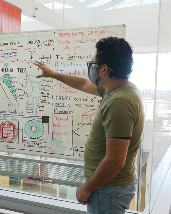 Scientist pointing at white board with information and diagrams on it